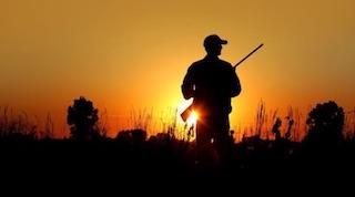 2016.08 Письмо Департамента охотничьего и рыбного хозяйства Томской области о выдаче охотничьих лицензий представителям коренных малочисленныхнародов